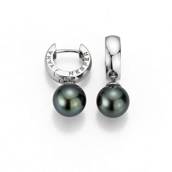 Perlenohrringe (Creolen) UN18 mit Tahiti Perlen